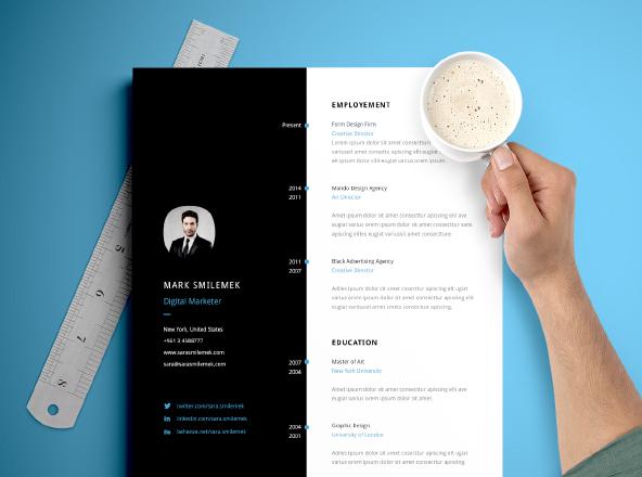 vertical resume template