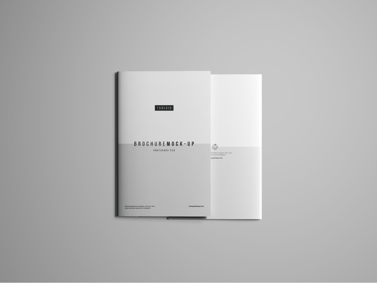 Tabloid Brochure Mockup - Front & Back