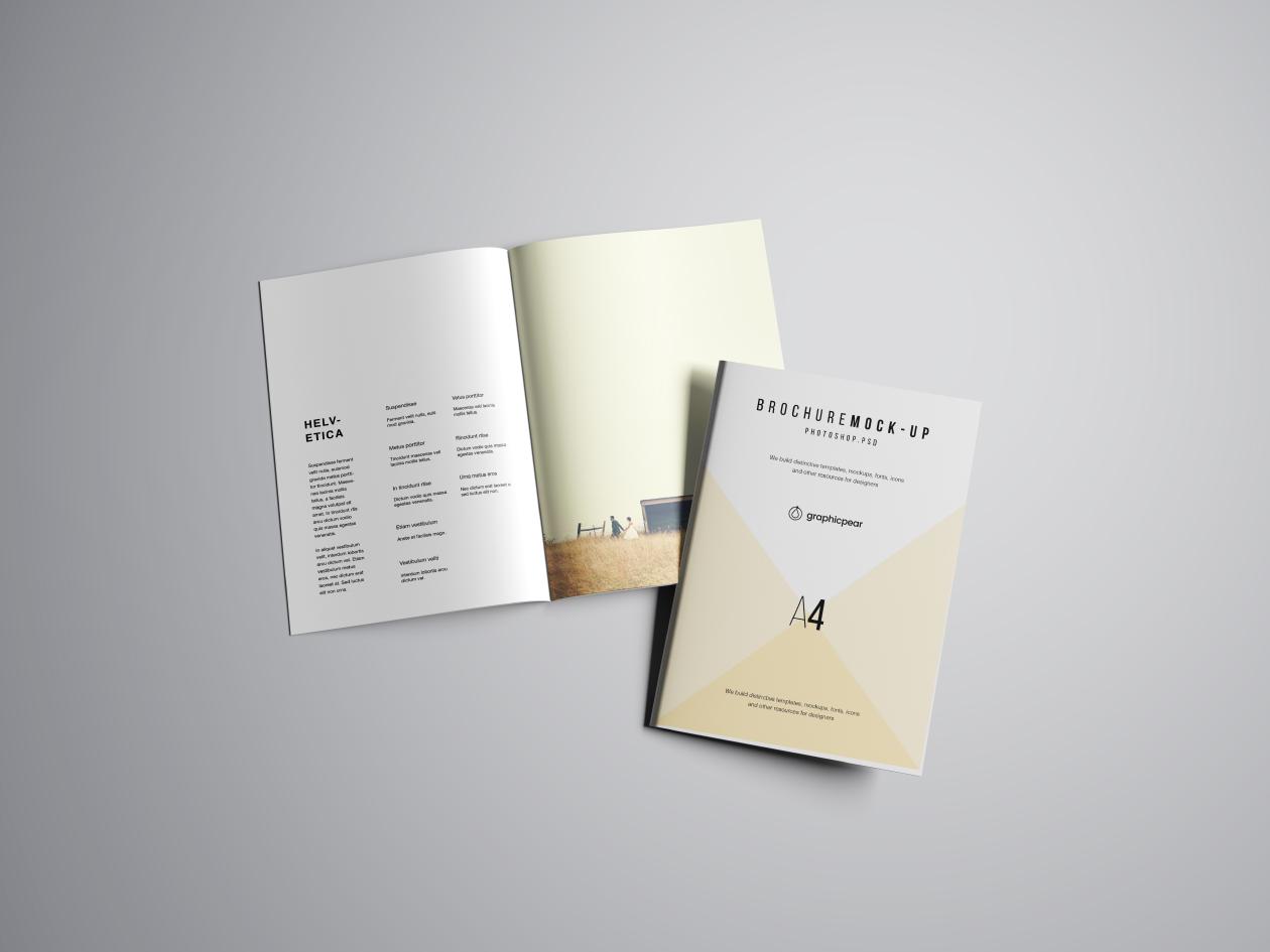 A4 Brochure Mockup - View