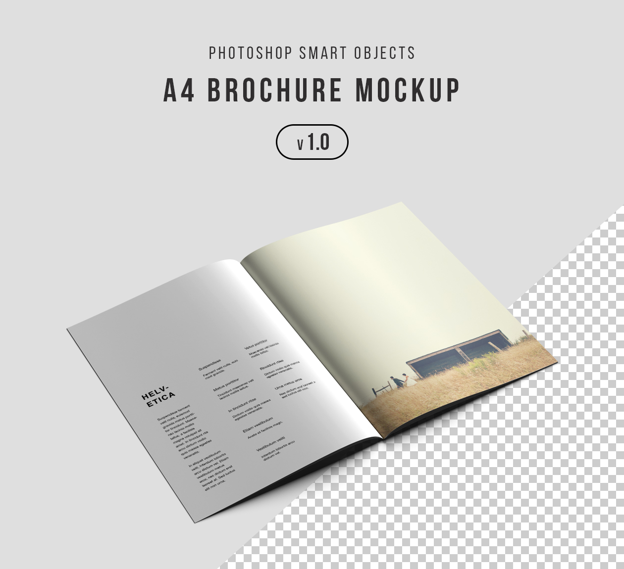 Photoshop a4 brochure mockup psd for A4 brochure template psd free download