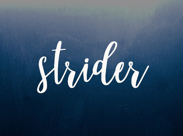 Strider Font