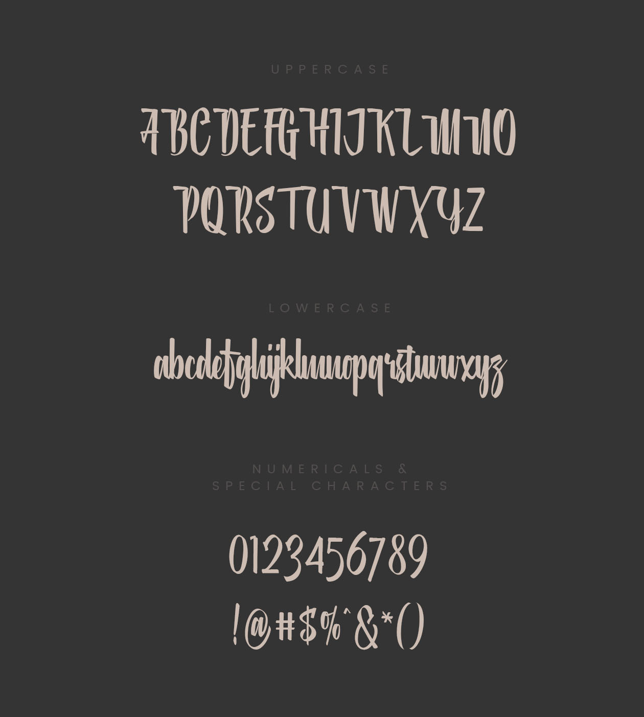 Shinta Brush Font