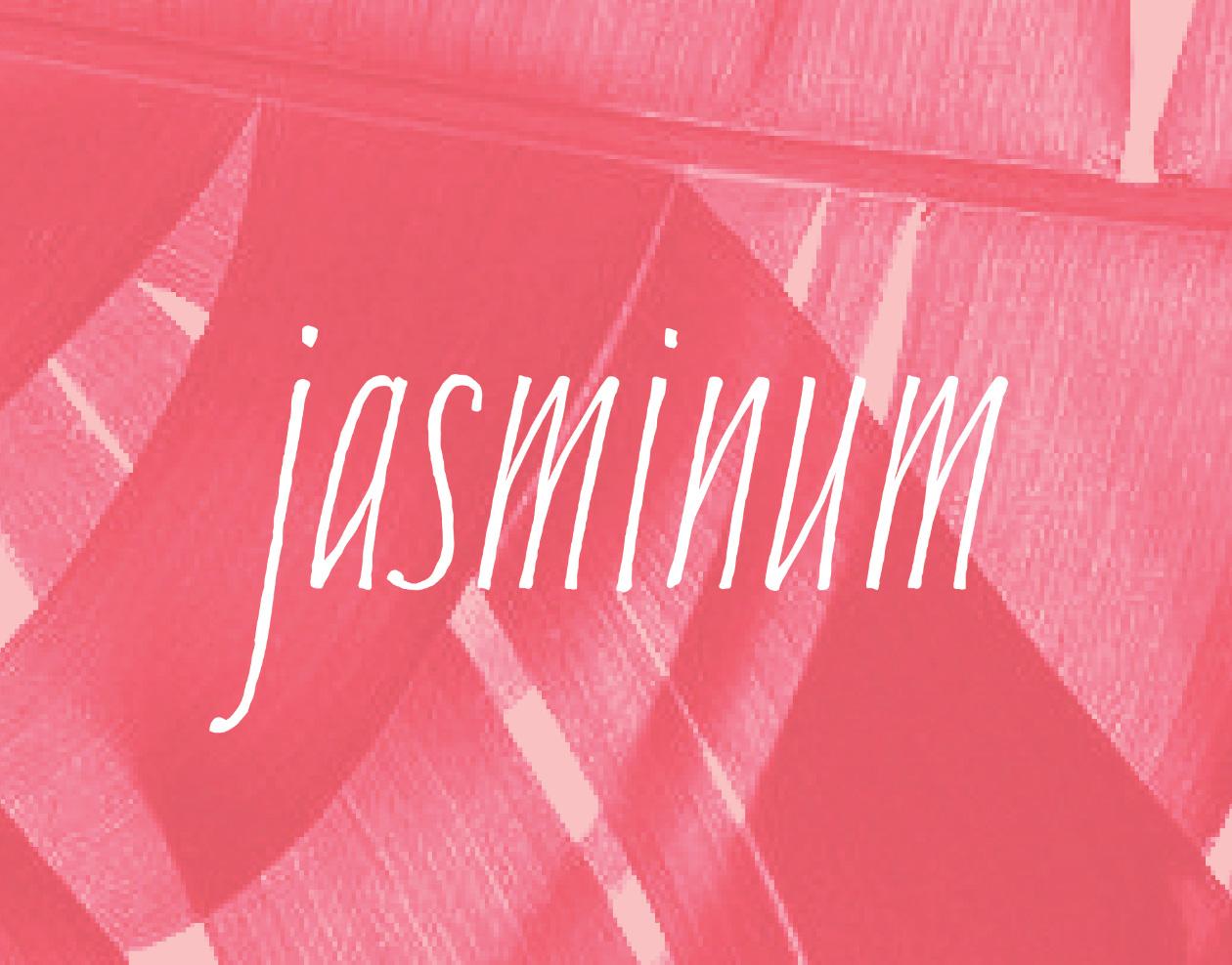 Jasmin Typeface