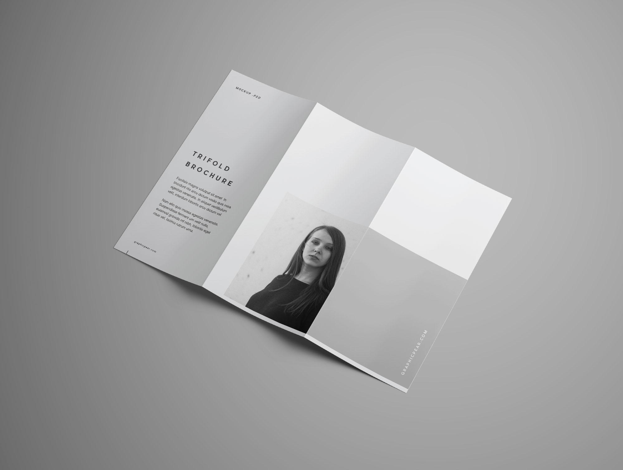 free advanced trifold brochure mockup