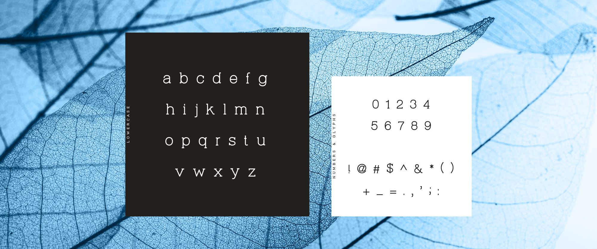 Virtuous Slab Font