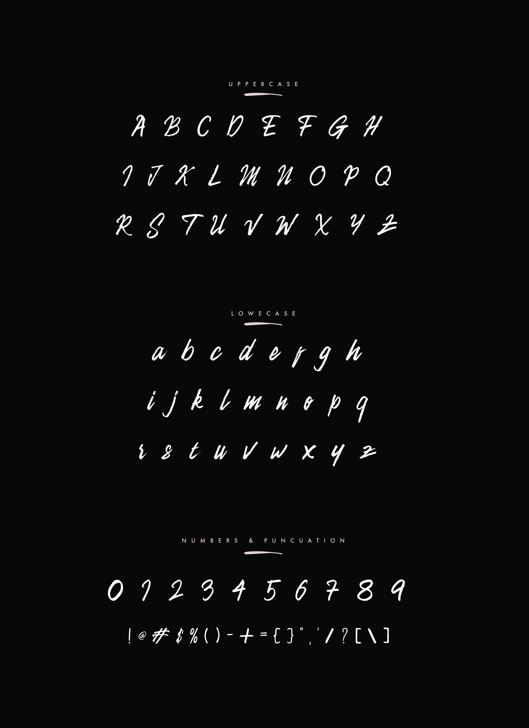 Camellion Script Letters
