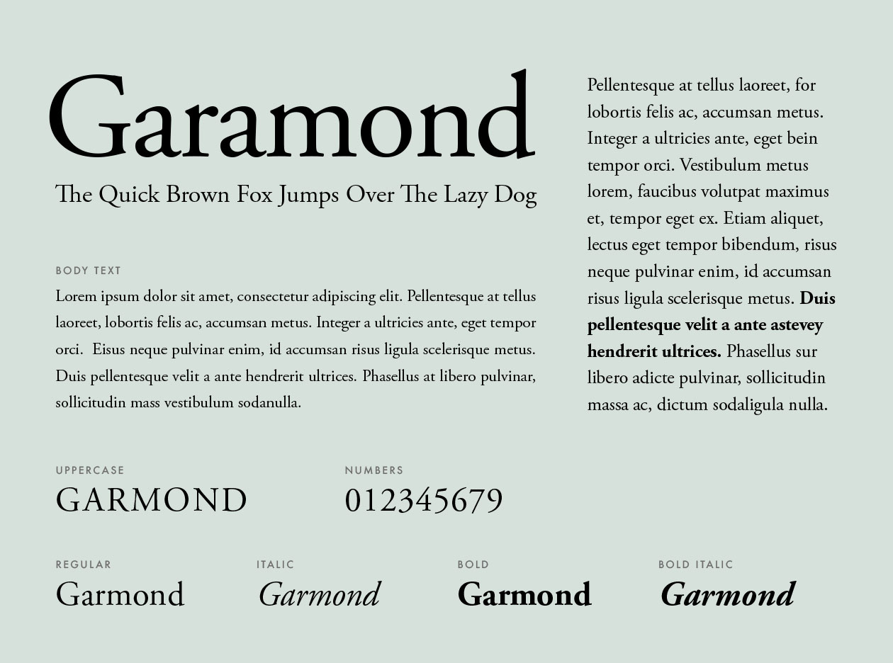 Resume Font Extraordinary What Fonts Should You Use For Your Resume
