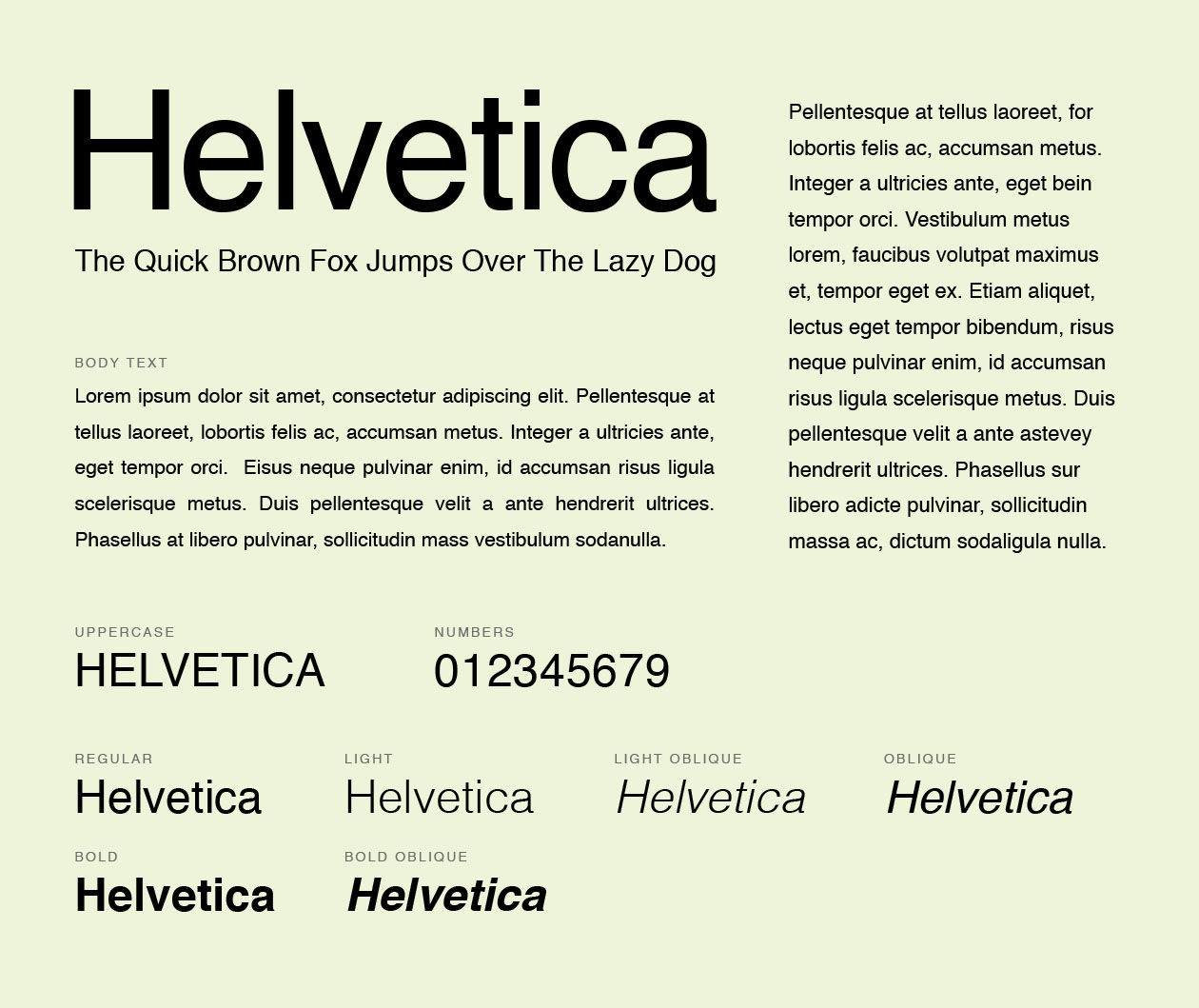 Helvetica Font  What Font Should A Resume Be In