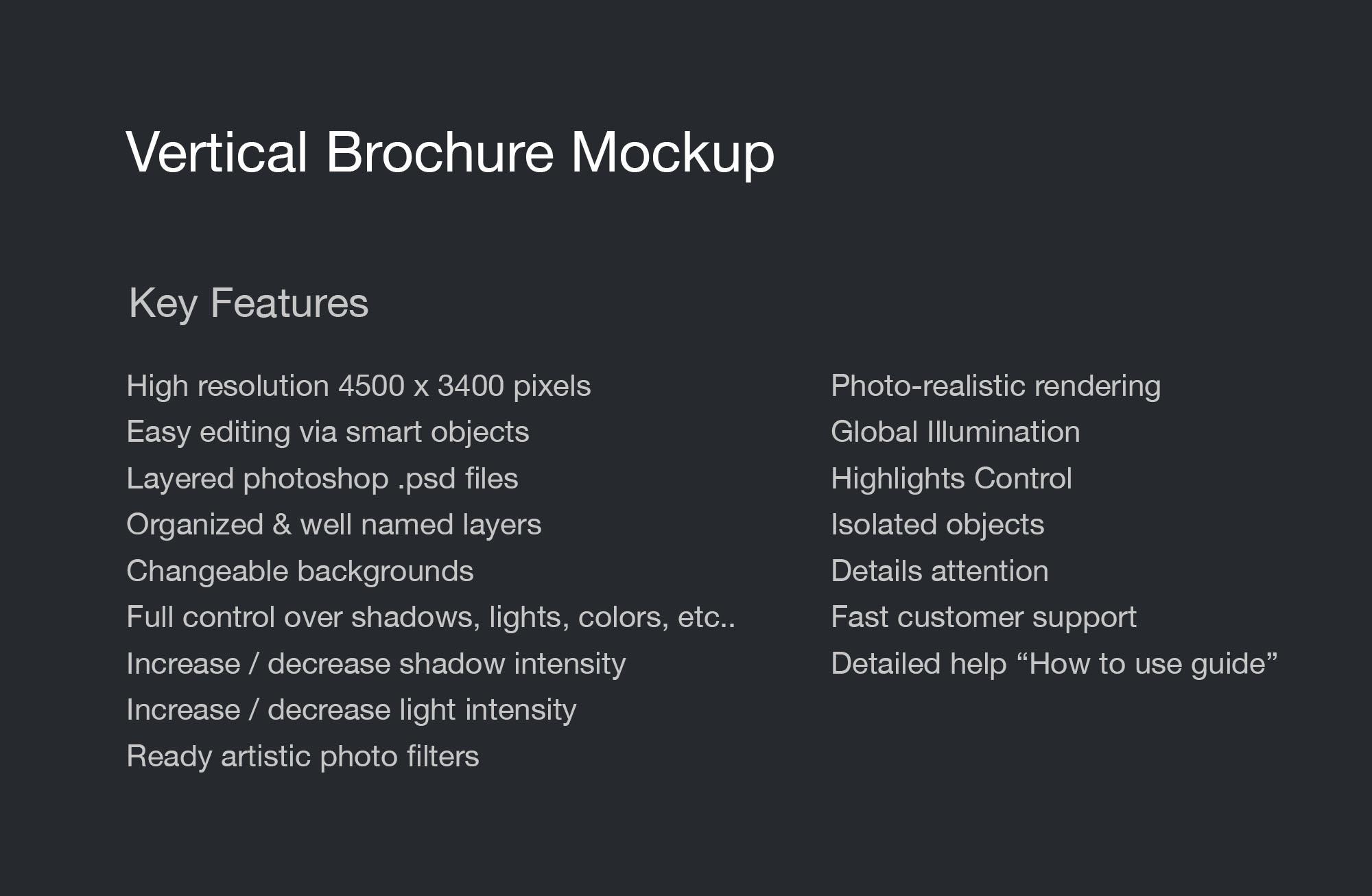 Vertical Brochure Mockup - Info