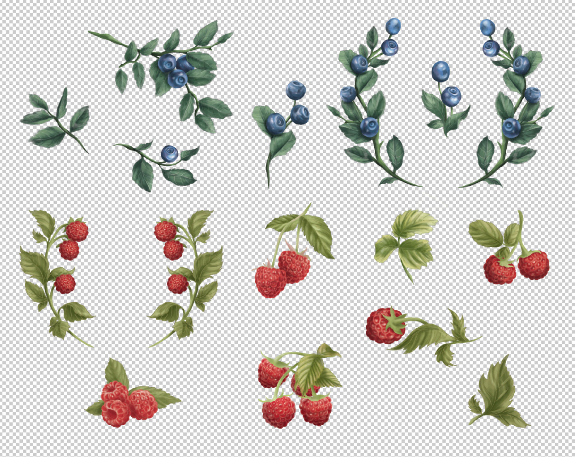 Hand Painted Berries
