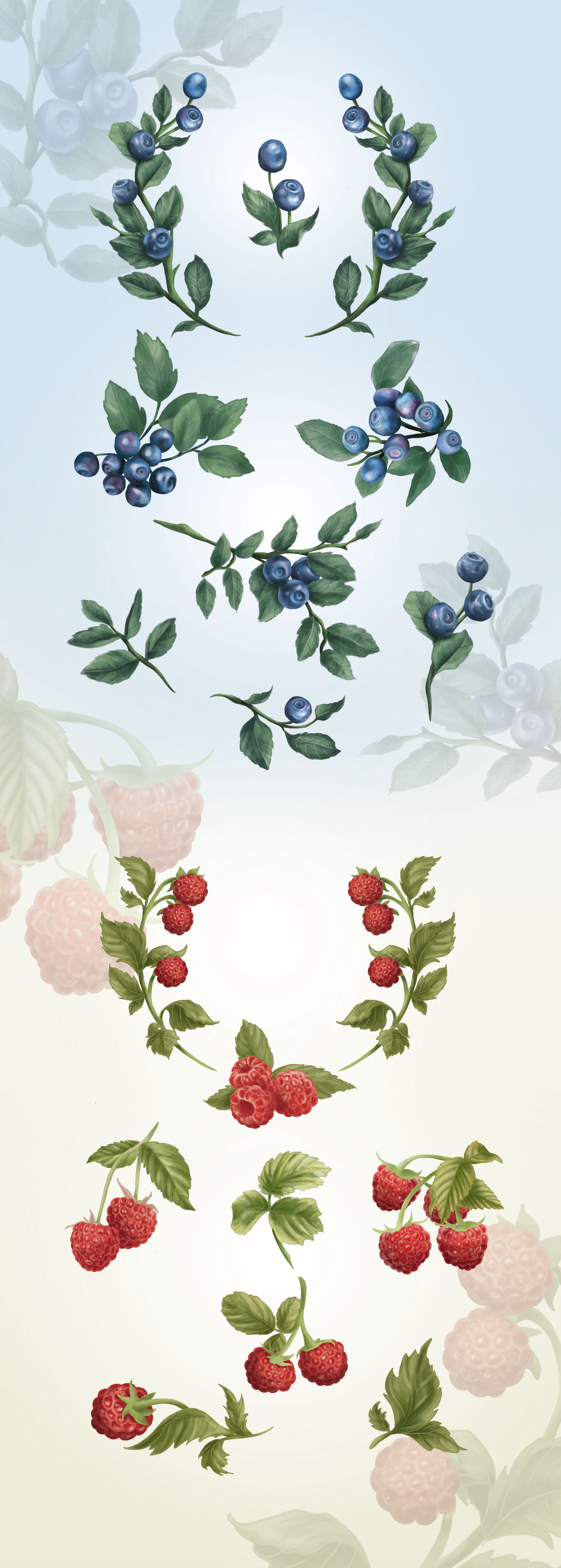 Berries Design Elements