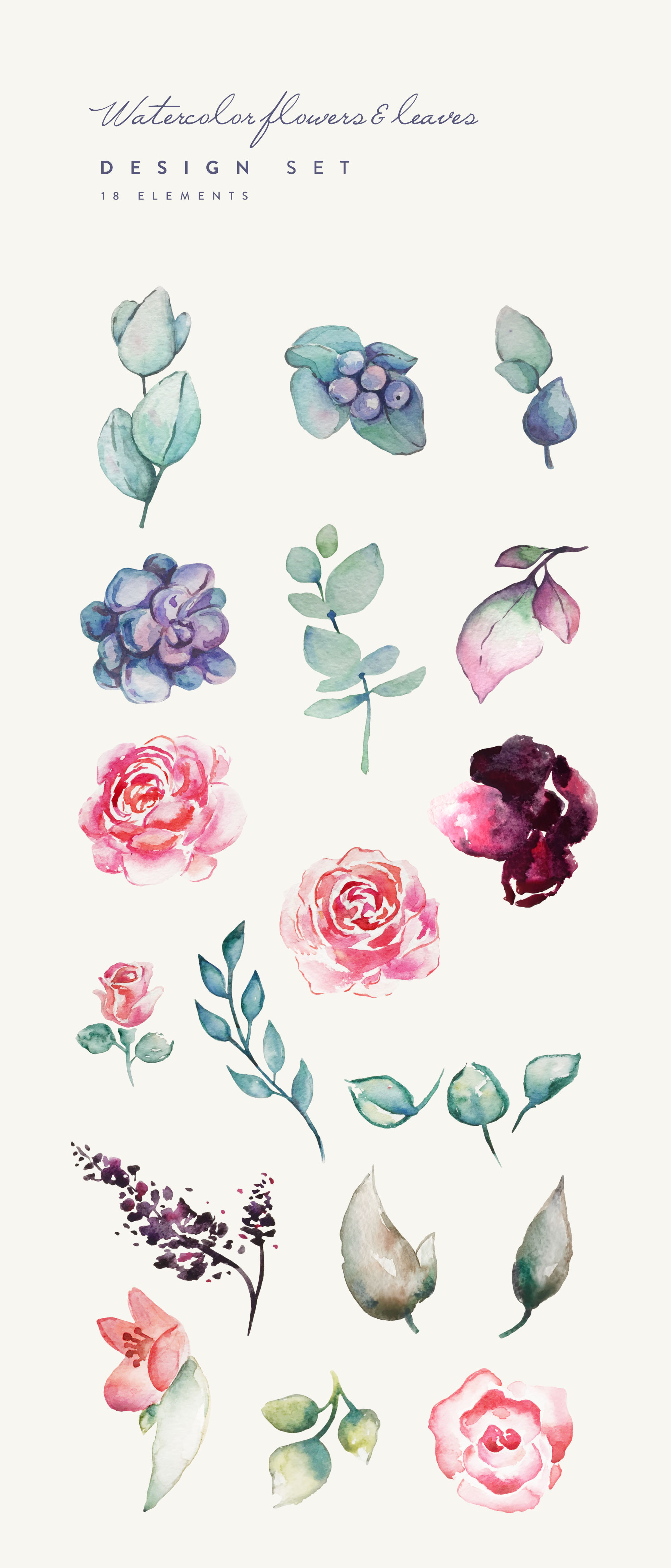 Watercolor Flowers & Leaves Design Elements