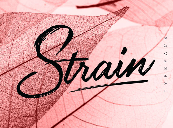 Strain Typeface