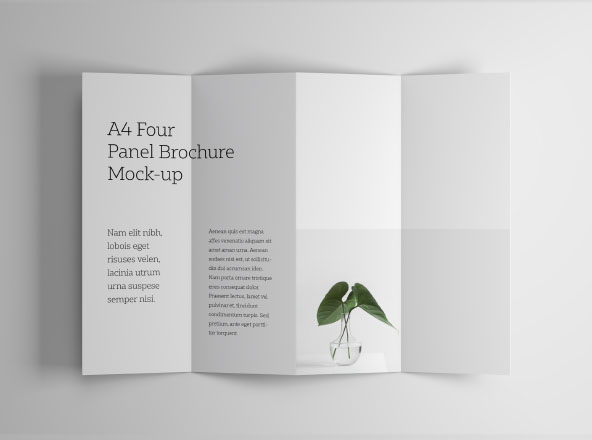 4 Panel Accordion Brochure Mockup PSD