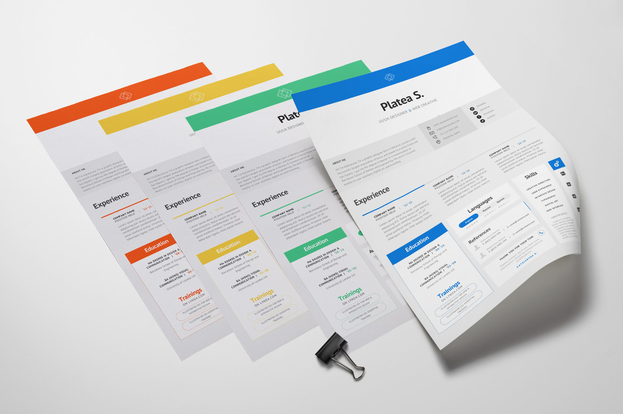 A4 Resume Template