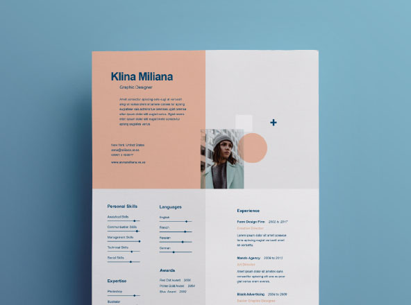 Split Resume Template