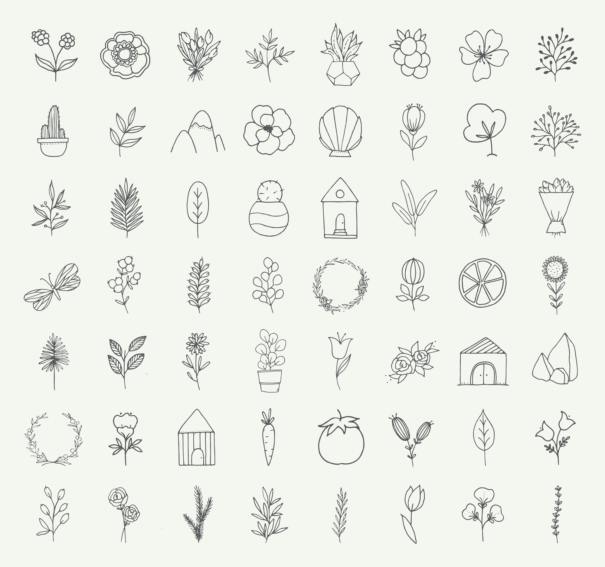 Nature and Botanical Hand Drawn Doodles