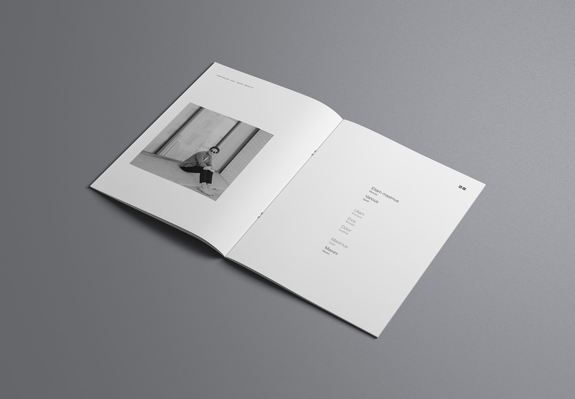 US Letter Opened Brochure Mockup
