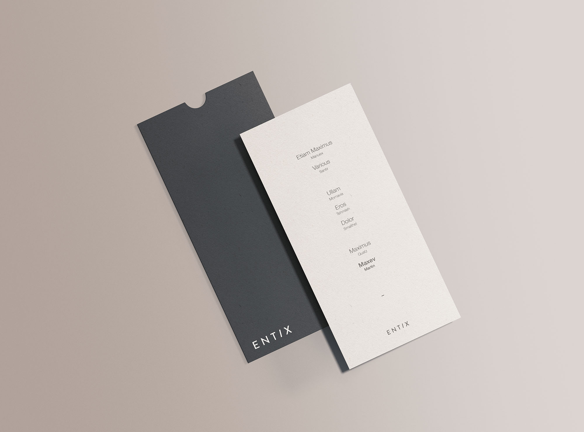 Vertical DL Flyer Mockup