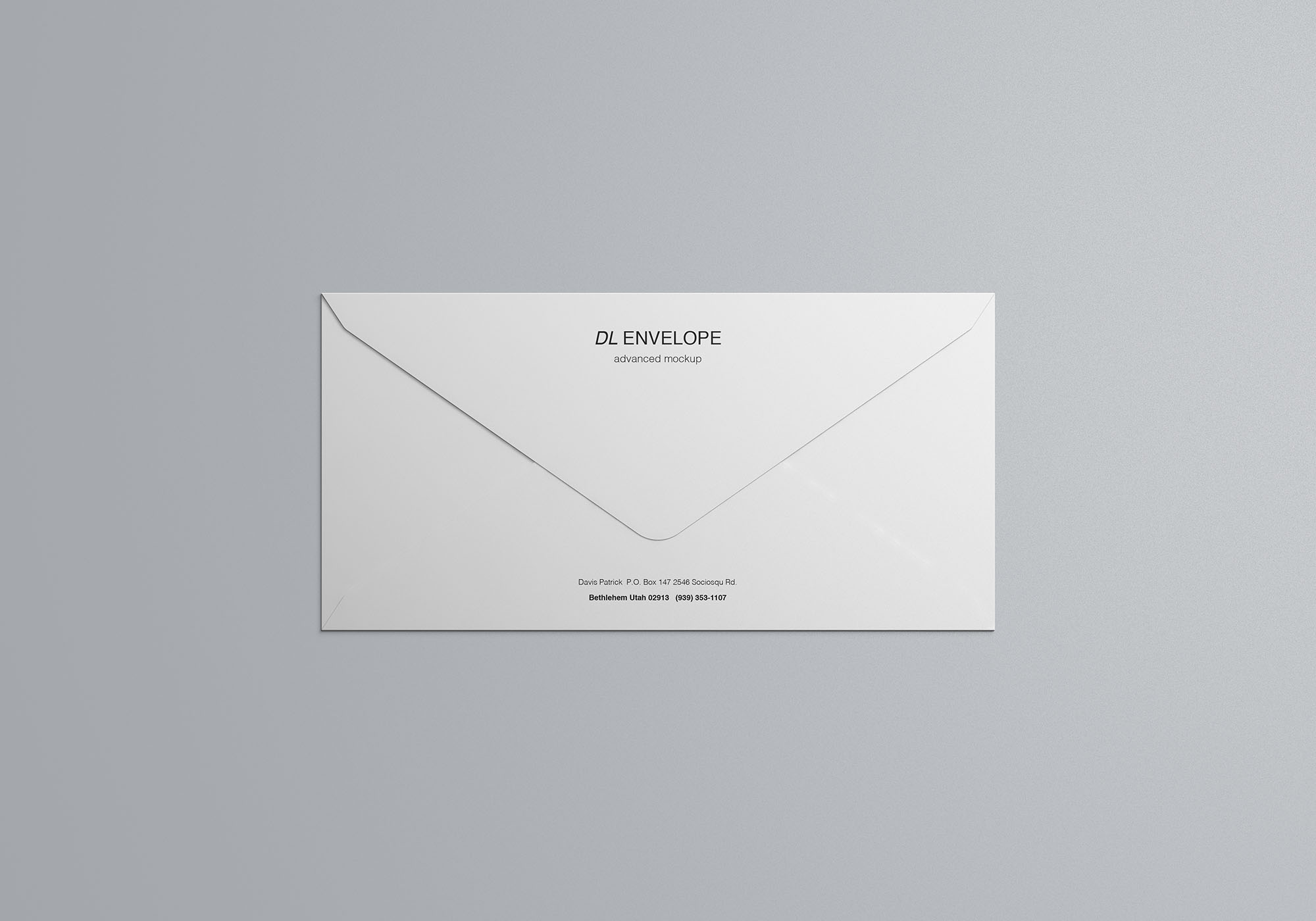 Baronial DL Envelope Mockup 5