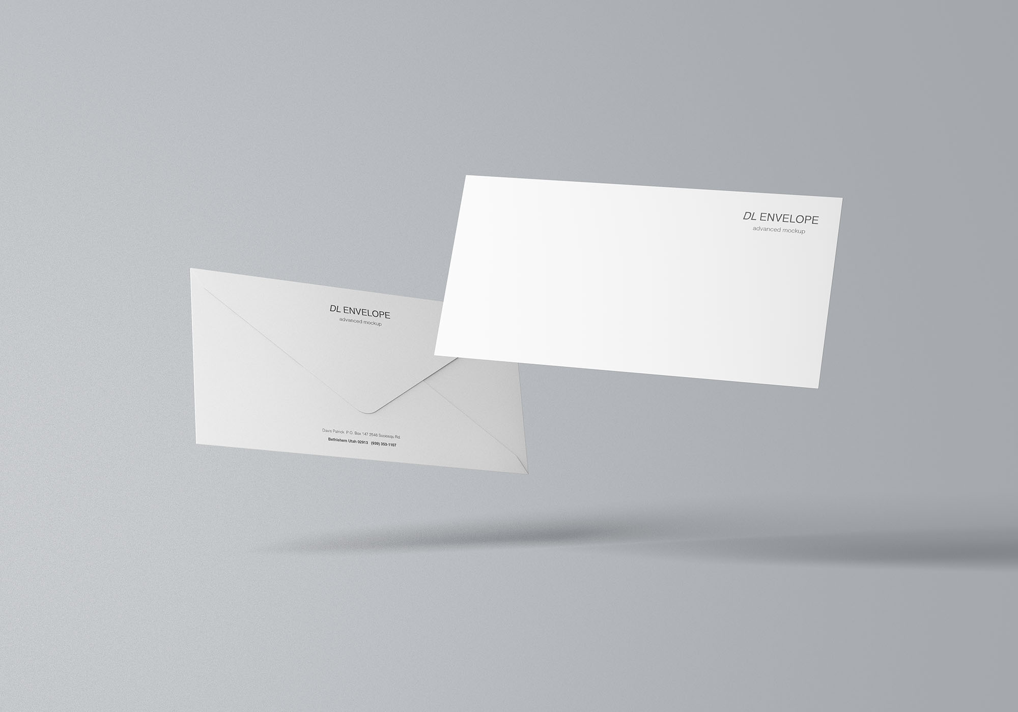 Baronial DL Envelope Mockup 7