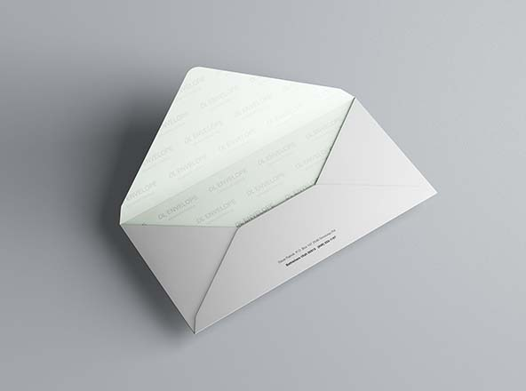 Baronial DL Envelope Mockup