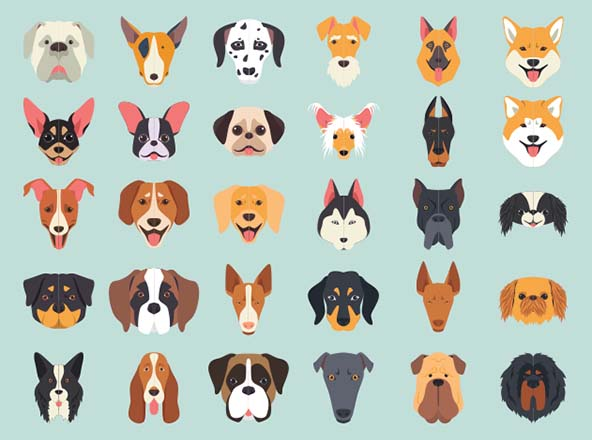 Dog Breeds Vector Illustration Icons