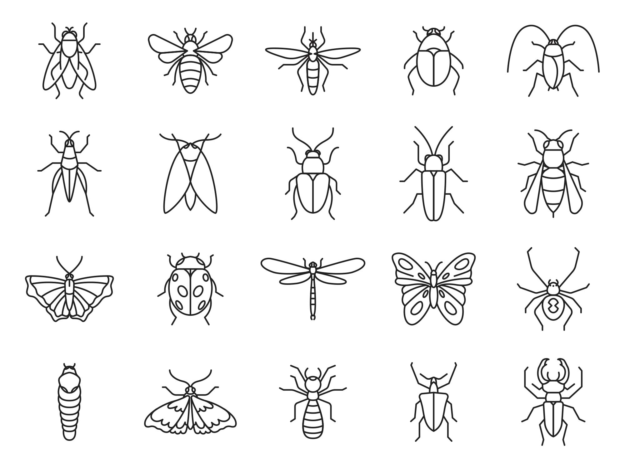 Insect Vector Icons
