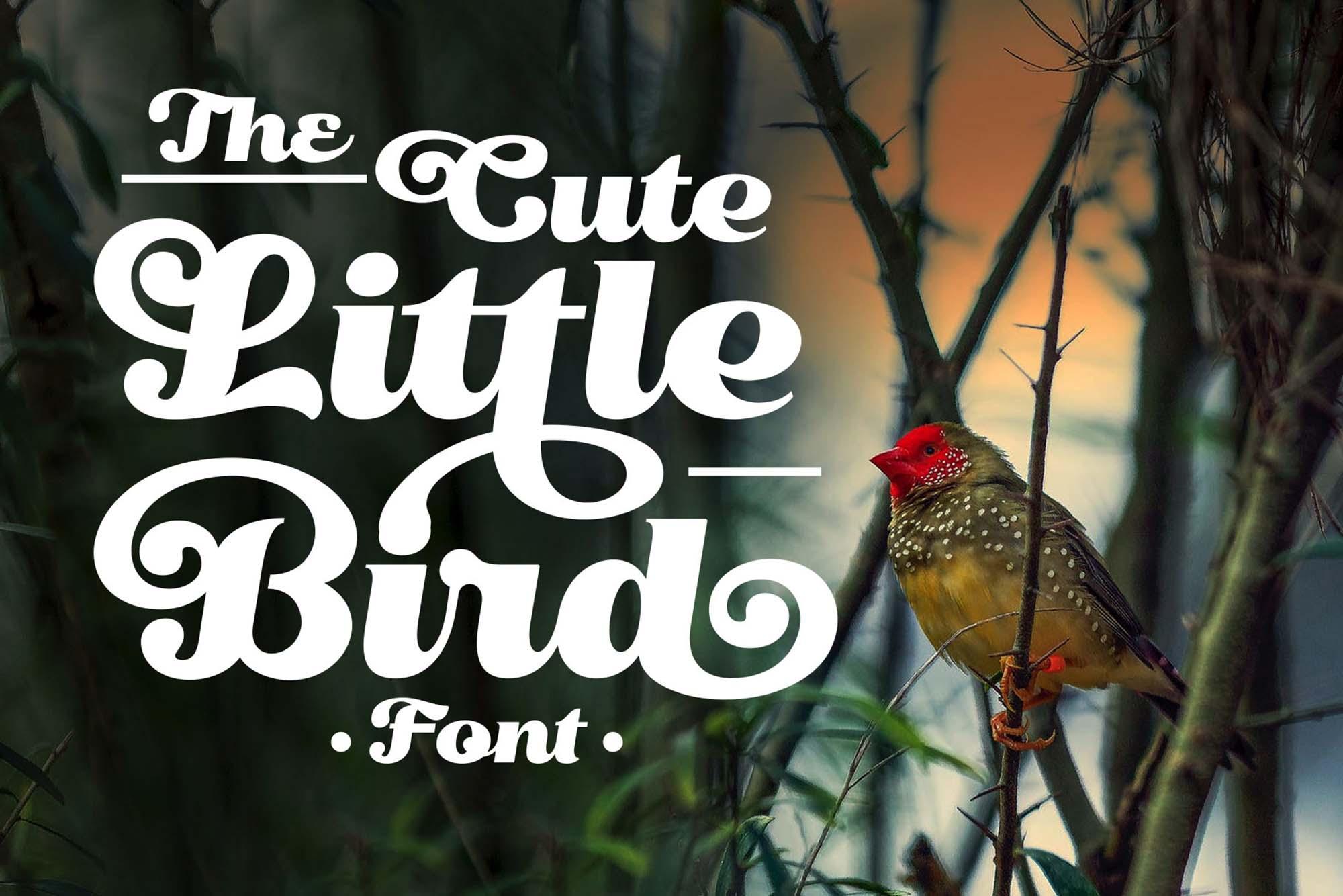 Little Bird Script Font 11