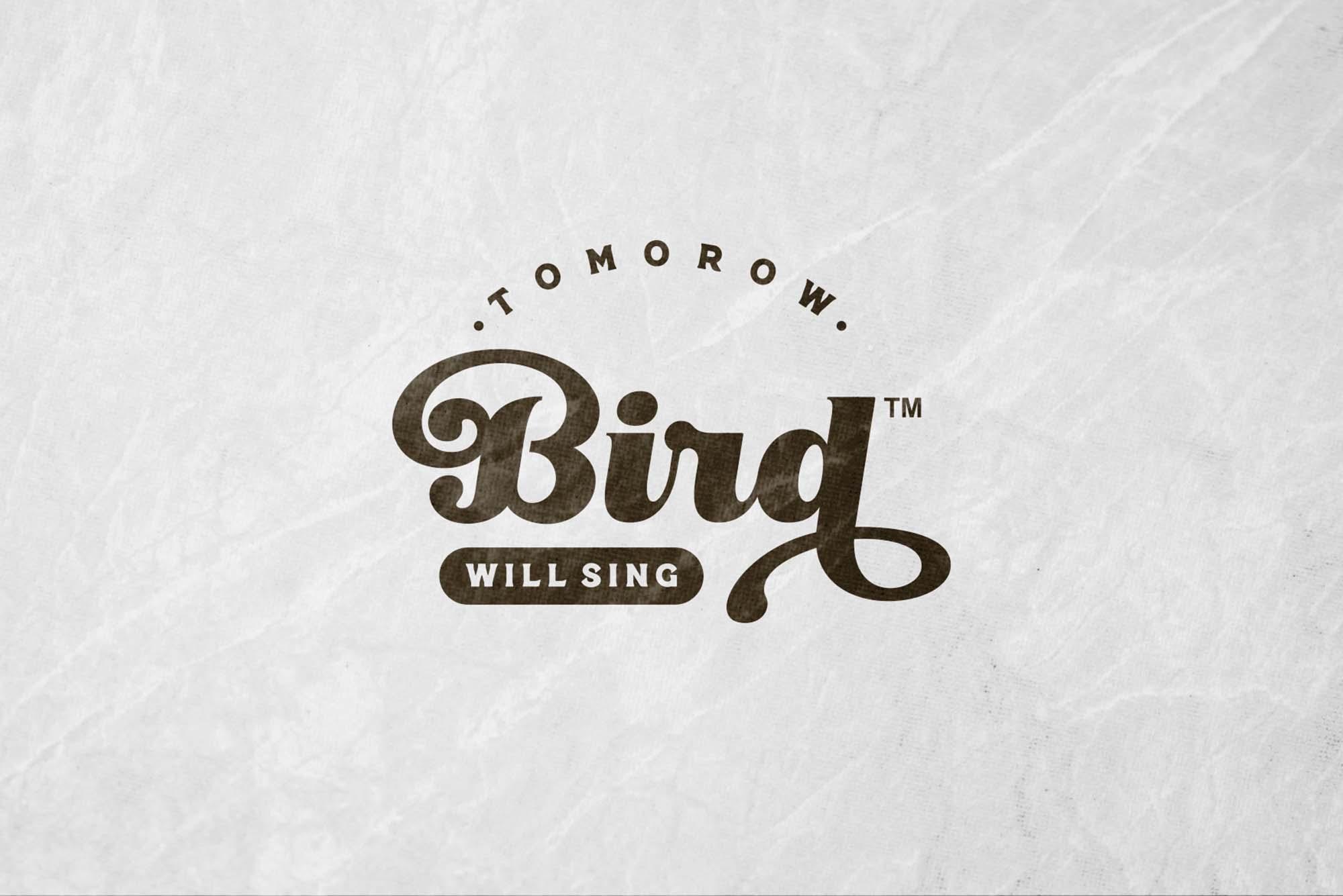 Little Bird Script Font 2
