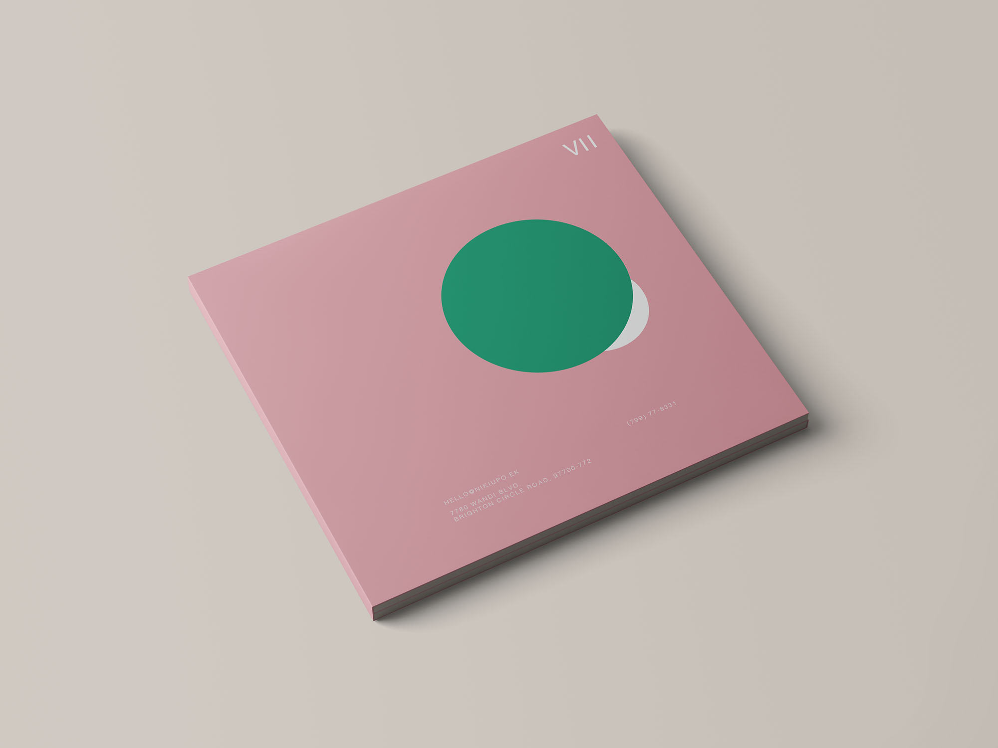 Digipak CD Mockup 5