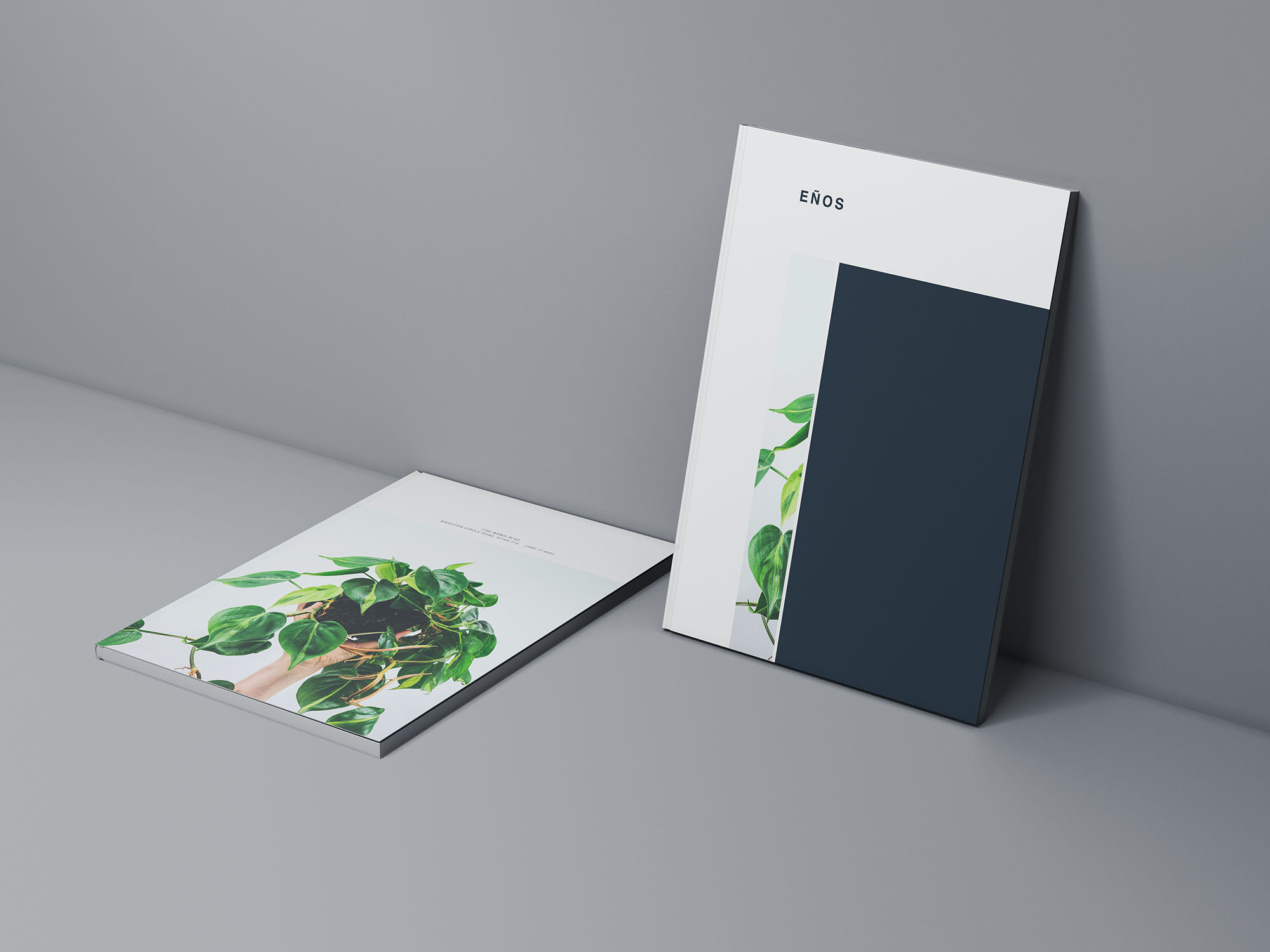 Two Magazine Cover Mockups